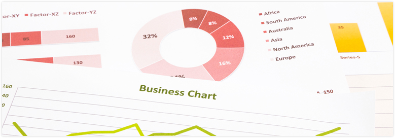 SEO Business Report